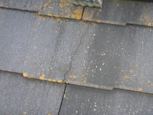 屋根に苔や藻の発生、ひび割れなど
