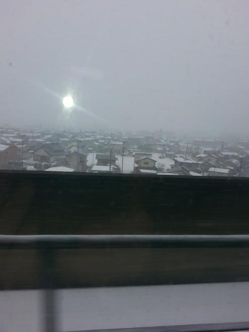 雪   真っ白真っ白