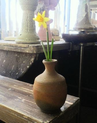 水仙の花が咲いたので、できたての備前の徳利に一輪。