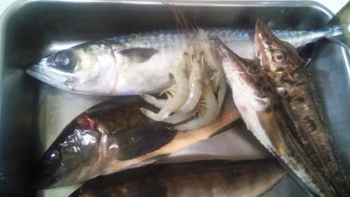 ヘルシーな魚料理で、女子会しましょう!