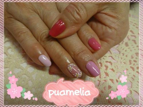 春♪5色ピンク