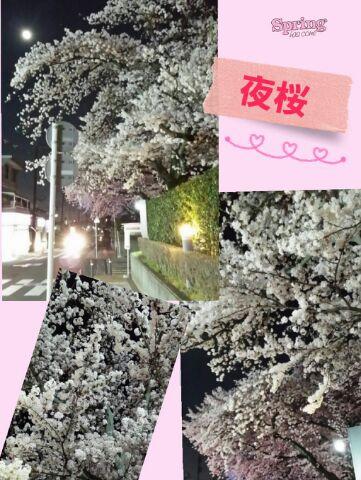 桜第2段d(⌒ー⌒)!