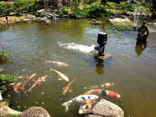 夏日の谷塚斎場にて司会業務
