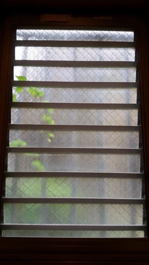 窓にみどり