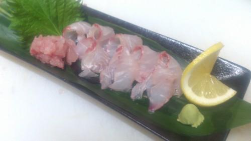 今週末おすすめの魚はこしょう鯛ですよ!