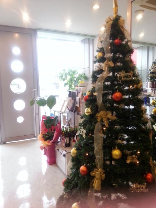今年のツリー☆