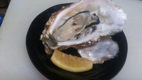 今が最もおいしい冬が旬の海のミルク(牡蠣)とスズキ(鱸)