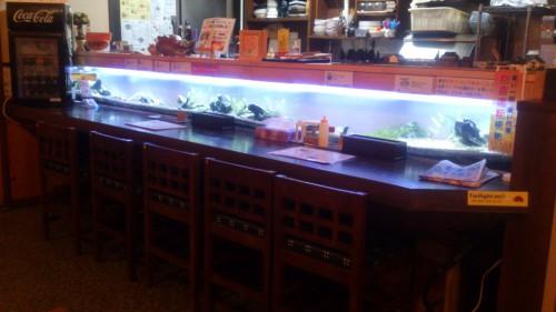 バレンタインデートにドンピシャの熱帯魚水槽があるレストラン