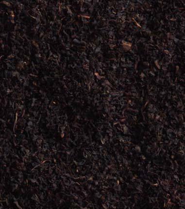 紅茶の旬で味はガラリと変わる