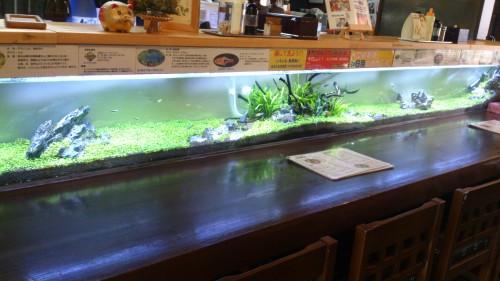 熱帯魚を目の前で眺めながら広島風お好み焼きが食べられるお店