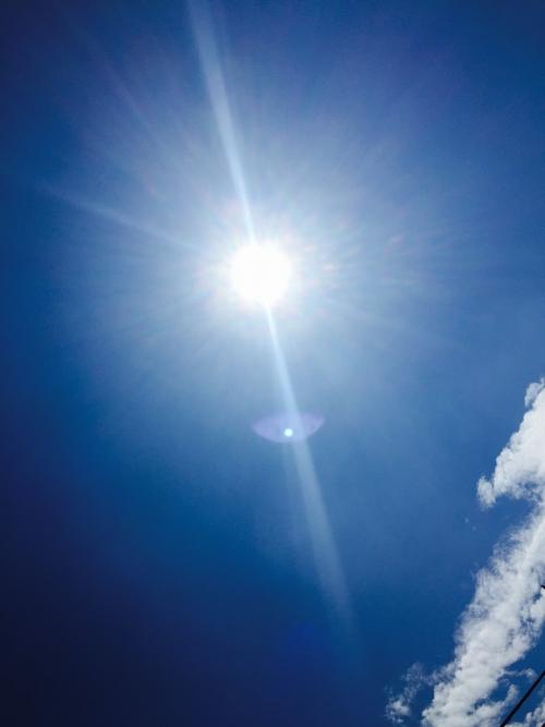 #2【残暑ですが季節外れのプチ知識】
