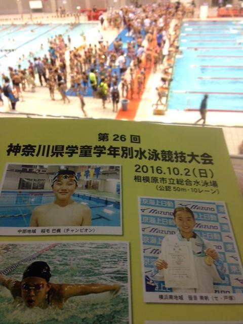 神奈川県学童学年別水泳競技大会