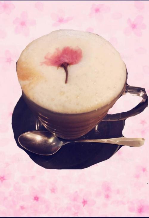 意外と知られていない桜の美容効果