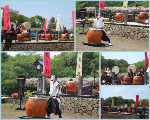 藤祭り、つつじ祭り、花祭りイベント和太鼓演奏埼玉、東京
