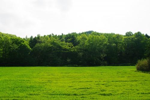 使っていない土地、手放したい土地、遊休地ありませんか?