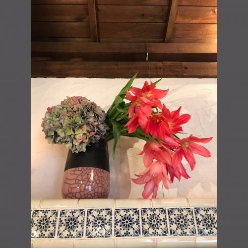 今週のお花!