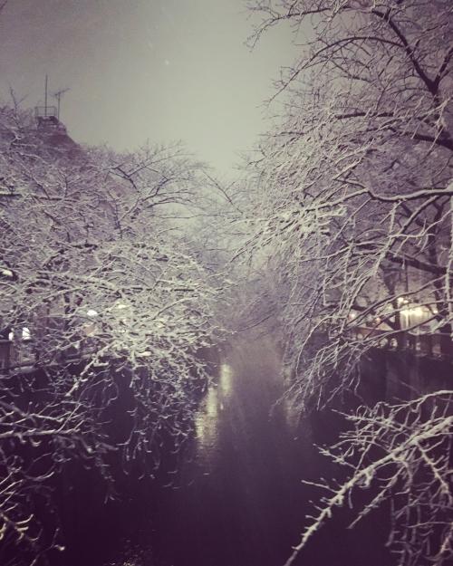 目黒川雪景色