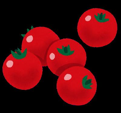 トマトに含まれる【リコピン】の効果