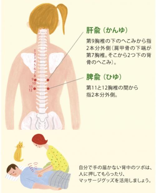 胃痛胃腸不良☆千歳烏山で指圧マッサージはオリンピア鍼灸整骨院