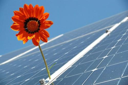 全量売電型産業用太陽光発電で安定した投資をしてみませんか??