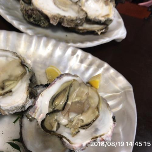 日曜日 岩牡蠣