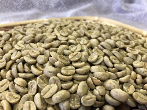 コーヒー豆に含まれる水分