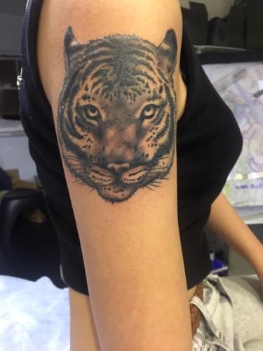 新潟 tattoo 虎