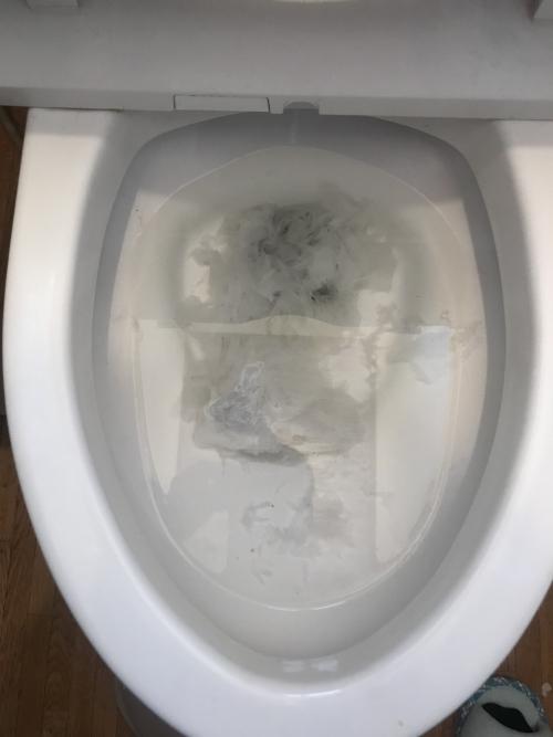 さいたま市見沼区にてトイレつまり除去実施。