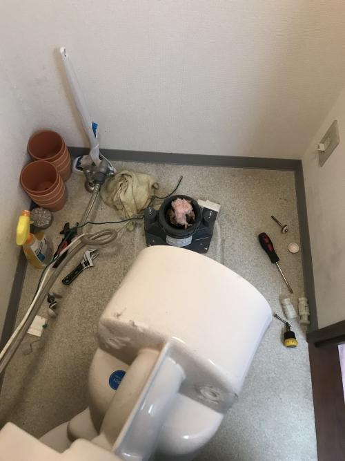 さいたま市大宮区にてトイレつまり除去実施。