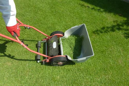 美しい緑を保つお手伝いを致します!|芝刈り|草刈り|上尾市