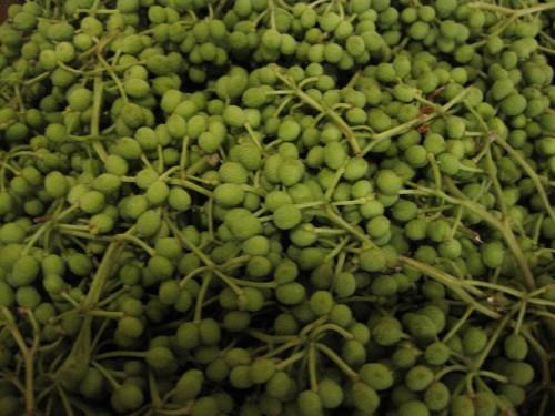 山椒は小粒でピリリと辛い山の宝石実山椒