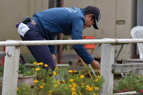 千葉県民体育大会馬術競技スナップ。