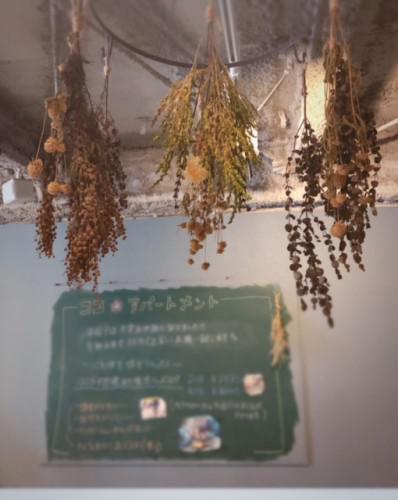 髪と肌に優しいオーガニック美容室です♪in錦糸町・押上