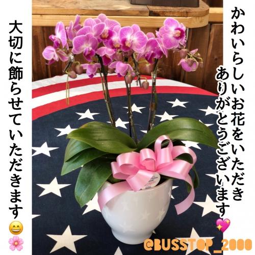可愛らしいお花をいただきありがとうございます♪