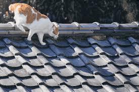 戸塚区で屋根葺き替え工事をお考えの方は外装専門店の弊社へ!