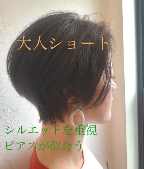大人ショート ピアスが似合うヘア [調布/国領]