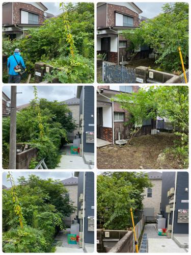 空家の庭木管理、草刈りと枝落としは八王子市便利屋サンライフ