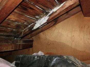 藤沢市の雨漏り工事は屋根専門業者のマルセイテックへ