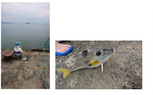 息子と魚釣り♪