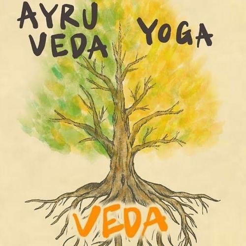 〜Ayurveda(アーユルヴェーダ)とは?□〜