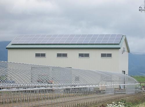 自家消費型太陽光発電は遮熱効果もあります!