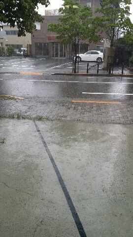 スゴイ雨です。