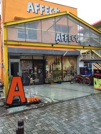 AFFECt.は、台風に負けず!営業してますよ!